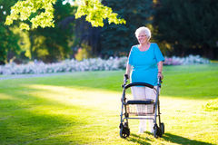 Senior handicapped lady with a walker in a park Stock Photography