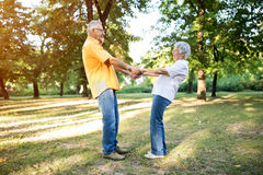 Senior happy couple enjoy at park together royalty free stock images