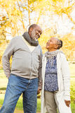 Senior happy couple looking each other Stock Images