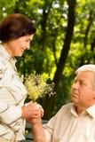 Senior happy couple walking Stock Photos