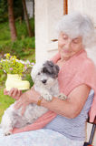 Senior happy woman hugging her white dog in the mountain Royalty Free Stock Images