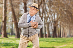 Senior having a cardiac arrest in the park Royalty Free Stock Photos