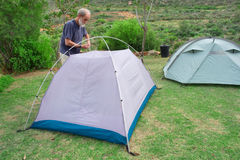 Senior hiker assembles tents on camping site Royalty Free Stock Photo