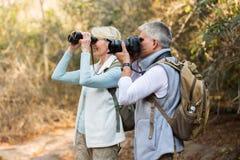 Senior hikers valley mountain Royalty Free Stock Photos