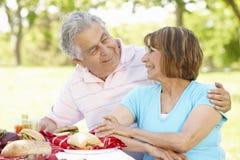 Senior Hispanic Couple Enjoying Picnic In Park Royalty Free Stock Photo