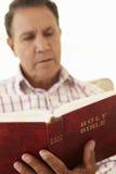 Senior Hispanic Man Reading Bible Royalty Free Stock Photo