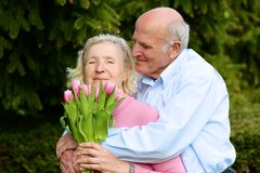Senior husband giving bouquet of tulips to his wife Stock Photos