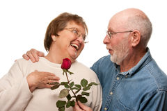 Senior Husband Giving Red Rose to Wife Stock Image