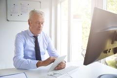 Senior investment advisor working in the office royalty free stock photo