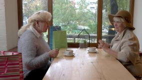 Senior ladies and cafe table. Cheerful women talking indoor. Morning conversation with a friend stock video