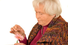 Senior lady with flower Stock Photos