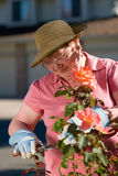 Senior lady in garden Royalty Free Stock Images