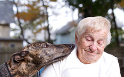 Senior lady with greyhound Stock Images