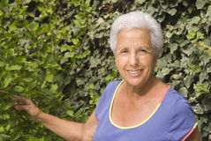 Senior lady in her garden Royalty Free Stock Image