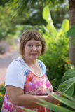 Senior lady with her plants in the tropic garden Stock Photos