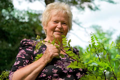 Senior Lady in a park Stock Photo