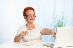 Senior lady pointing to laptop screen Royalty Free Stock Images