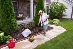 Senior lady preparing the garden for flowers Royalty Free Stock Photos