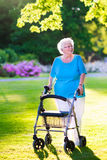 Senior lady with a walking aid in the park. Happy retired senior lady with walking disability enjoying a day in the park going for a walk with a wheel chair or royalty free stock photography