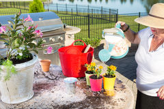Senior lady watering newly potted plants Stock Images