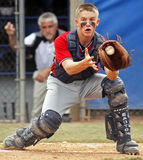 Senior league baseball world series catcher plate Stock Image