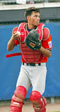 Senior league baseball world series italy catcher Stock Photography