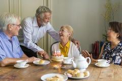 Senior Life Celebration Cake Birthday Royalty Free Stock Images