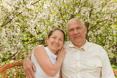 Senior love Stock Photography