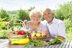 Senior loving couple Royalty Free Stock Image