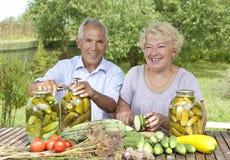 Senior loving couple Stock Image