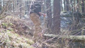 Senior lumberjack cutting tree with axe in the forest.  stock video