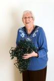 Senior mad at tangled christmas lights Royalty Free Stock Photography