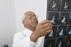 Senior Male Doctor Examining X-Ray In Clinic Stock Photo