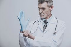 Senior male doctor wearing glove on grey background.  Royalty Free Stock Photo