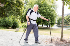 Senior Male Hiker Royalty Free Stock Photo