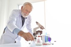 Senior Male Research Scientist is Using Micropipette Filling Tes. T Tubes in the Laboratory Royalty Free Stock Images