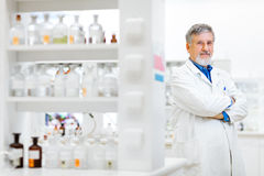 Senior male researcher carrying out scientific research in a lab Royalty Free Stock Photography