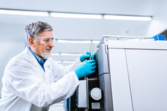 Senior male researcher carrying out scientific research in a lab Stock Images