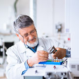 Senior male researcher  in a lab Stock Photo
