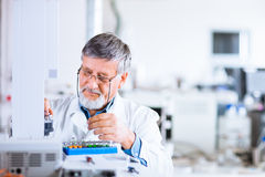 Senior male researcher  in a lab Stock Photos
