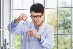 Senior male scientist with test tube making research in laboratory. Copy space Royalty Free Stock Photo