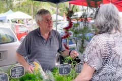 Senior male serving female customer at farmers market stall for. Organic produce, with Christmas tree and tinsel in background. Photographed in Kerikeri royalty free stock images