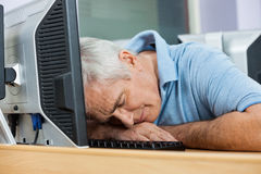 Senior Male Student Sleeping At Computer Desk. Tired senior male student sleeping at computer desk in classroom Royalty Free Stock Images