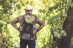 Senior male tourist hiking in wild nature. Ready for journey. Confident old man is standing with arms akimbo in forest. He is carrying touristic backpack. Focus Royalty Free Stock Photography