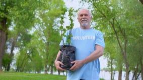 Senior male volunteer holding plant seedling smiling camera, reforestation stock video