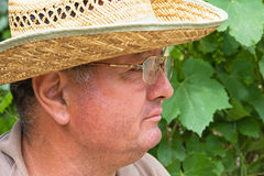Senior man. With glasses and straw hat royalty free stock photography
