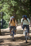 Senior man and adult son, with cycling helmets and rucksacks, mountain biking along woodland trail, smiling, front view Royalty Free Stock Images