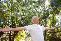 Senior man with arms outstretched in the forest Stock Photo