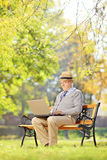 Senior man on a bench and working on a laptop in a park Stock Photo