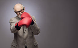 Senior man in boxing gloves. Senior man making hit wearing boxing gloves on gray background Royalty Free Stock Photo